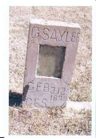 SAYLER, G. - McIntosh County, North Dakota | G. SAYLER - North Dakota Gravestone Photos