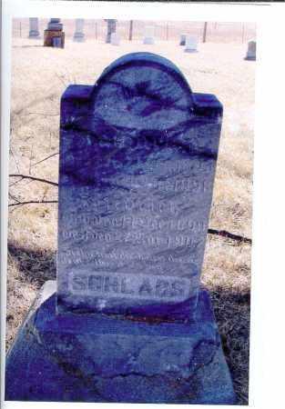 SCHLABS, FRIEDRICH - McIntosh County, North Dakota   FRIEDRICH SCHLABS - North Dakota Gravestone Photos