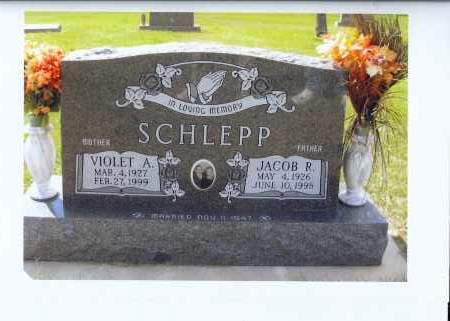 WOLF SCHLEPP, VIOLET A. - McIntosh County, North Dakota | VIOLET A. WOLF SCHLEPP - North Dakota Gravestone Photos