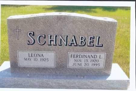 SCHNABEL, FERDINAND L. - McIntosh County, North Dakota | FERDINAND L. SCHNABEL - North Dakota Gravestone Photos