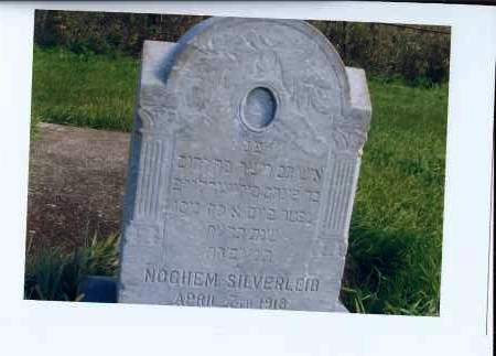 SILVERLEIB, NOCHEM - McIntosh County, North Dakota | NOCHEM SILVERLEIB - North Dakota Gravestone Photos