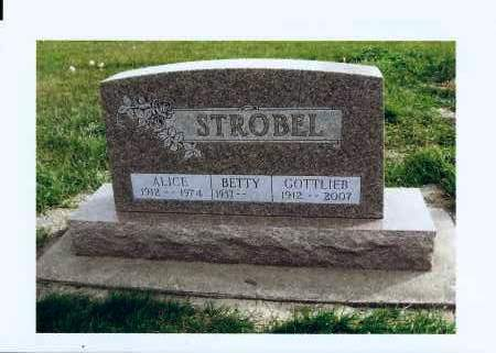 STROBEL, ALICE - McIntosh County, North Dakota | ALICE STROBEL - North Dakota Gravestone Photos