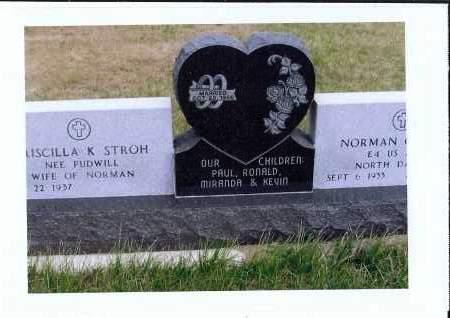 STROH, NORMAN O. - McIntosh County, North Dakota | NORMAN O. STROH - North Dakota Gravestone Photos