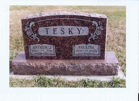 FUELLER TESKY, PAULINE - McIntosh County, North Dakota | PAULINE FUELLER TESKY - North Dakota Gravestone Photos