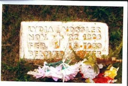 VOSSLER, LYDIA - McIntosh County, North Dakota | LYDIA VOSSLER - North Dakota Gravestone Photos