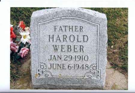 WEBER, HAROLD - McIntosh County, North Dakota | HAROLD WEBER - North Dakota Gravestone Photos