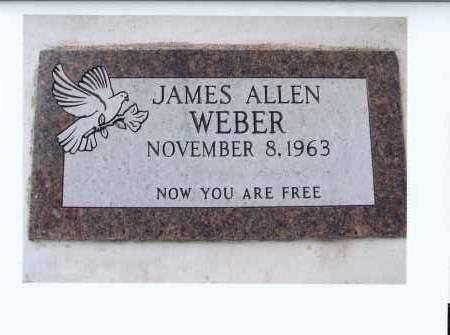 WEBER, JAMES ALLEN - McIntosh County, North Dakota | JAMES ALLEN WEBER - North Dakota Gravestone Photos