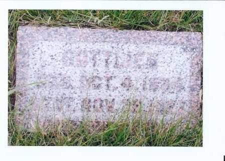 WOLFF, GOTTLIEB - McIntosh County, North Dakota | GOTTLIEB WOLFF - North Dakota Gravestone Photos
