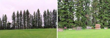 00--CEMETERY, PHOTOS - Nelson County, North Dakota | PHOTOS 00--CEMETERY - North Dakota Gravestone Photos