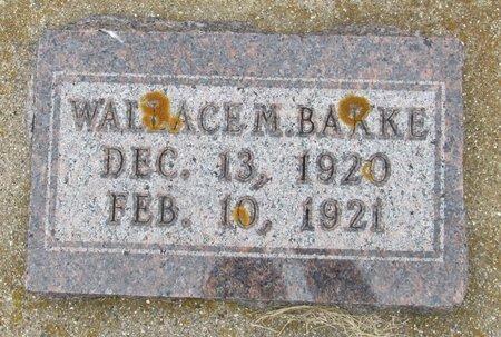 BAKKE, WALLACE M. - Nelson County, North Dakota | WALLACE M. BAKKE - North Dakota Gravestone Photos