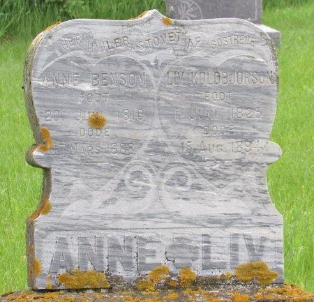 BENSON, ANNE - Nelson County, North Dakota | ANNE BENSON - North Dakota Gravestone Photos