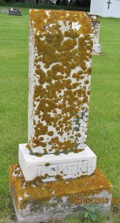 LOKEN, OLE - Nelson County, North Dakota   OLE LOKEN - North Dakota Gravestone Photos