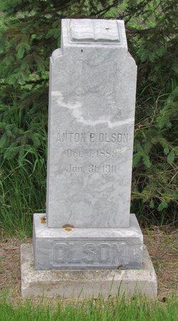 OLSON, ANTON P. - Nelson County, North Dakota | ANTON P. OLSON - North Dakota Gravestone Photos