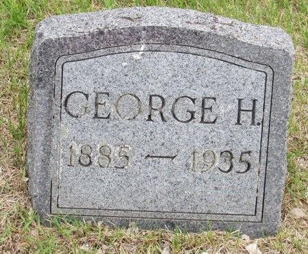 OLSON, GEORGE H. - Nelson County, North Dakota | GEORGE H. OLSON - North Dakota Gravestone Photos