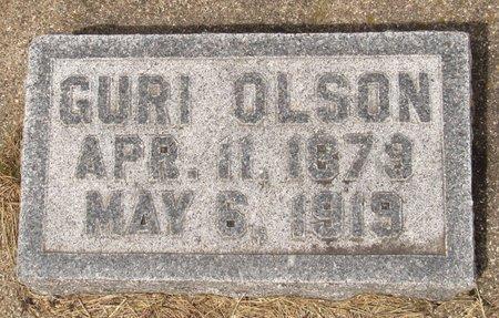 OLSON, GURI - Nelson County, North Dakota | GURI OLSON - North Dakota Gravestone Photos