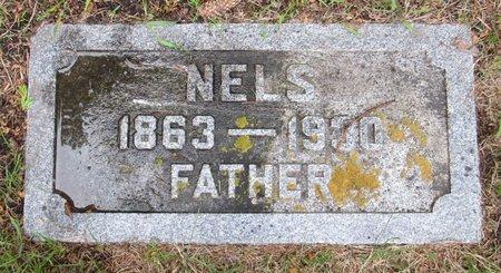 SEVERSON, NELS - Nelson County, North Dakota | NELS SEVERSON - North Dakota Gravestone Photos
