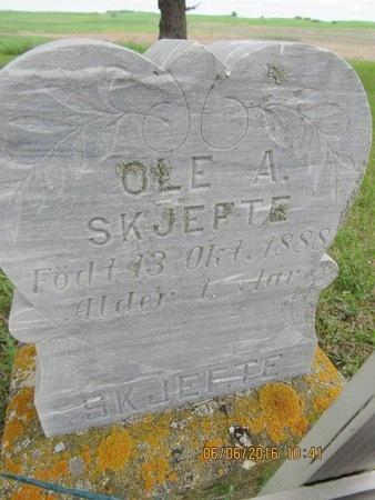 SKJEFTE, OLE A. - Nelson County, North Dakota | OLE A. SKJEFTE - North Dakota Gravestone Photos