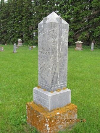 THOMPSON, TOLLEF T. - Nelson County, North Dakota | TOLLEF T. THOMPSON - North Dakota Gravestone Photos