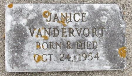VANDERVORT, JANICE - Nelson County, North Dakota | JANICE VANDERVORT - North Dakota Gravestone Photos