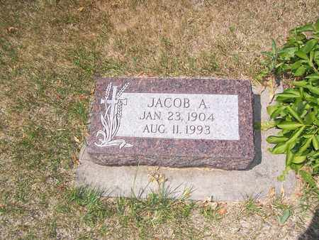 JACOBSON, JACOB - Ransom County, North Dakota | JACOB JACOBSON - North Dakota Gravestone Photos