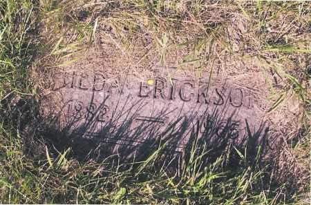 ERICKSON, HILDA - Richland County, North Dakota | HILDA ERICKSON - North Dakota Gravestone Photos