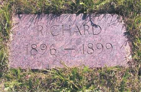 ERICKSON, RICHARD - Richland County, North Dakota   RICHARD ERICKSON - North Dakota Gravestone Photos