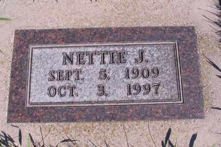 JACOBSON, NETTIE J. - Richland County, North Dakota | NETTIE J. JACOBSON - North Dakota Gravestone Photos