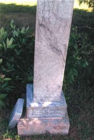 JOHNSON, ANNA - Richland County, North Dakota   ANNA JOHNSON - North Dakota Gravestone Photos