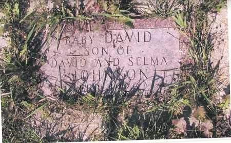 JOHNSON, DAVID - Richland County, North Dakota | DAVID JOHNSON - North Dakota Gravestone Photos