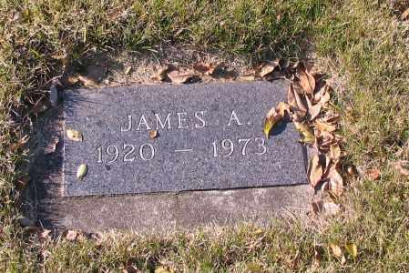 JOHNSON, JAMES A. - Richland County, North Dakota | JAMES A. JOHNSON - North Dakota Gravestone Photos