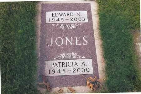 JONES, EDWARD N. - Richland County, North Dakota | EDWARD N. JONES - North Dakota Gravestone Photos