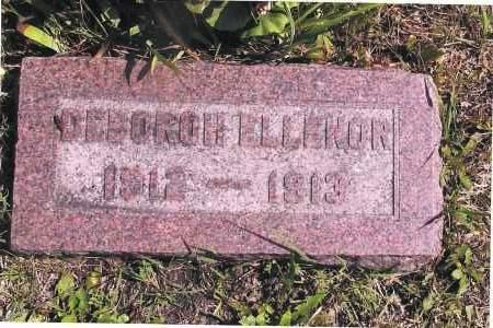 NELSON, DEBOROH ELLENOR - Richland County, North Dakota | DEBOROH ELLENOR NELSON - North Dakota Gravestone Photos