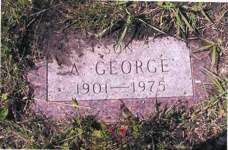 NELSON, GEORGE A. - Richland County, North Dakota | GEORGE A. NELSON - North Dakota Gravestone Photos