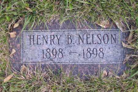 NELSON, HENRY B. - Richland County, North Dakota | HENRY B. NELSON - North Dakota Gravestone Photos