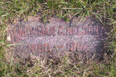 NELSON, NEWMAN - Richland County, North Dakota | NEWMAN NELSON - North Dakota Gravestone Photos