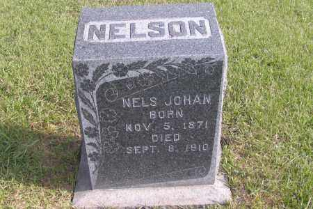 NELSON, NELS JOHAN - Richland County, North Dakota | NELS JOHAN NELSON - North Dakota Gravestone Photos