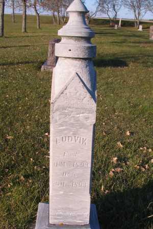 PETERSON, LUDVIK - Richland County, North Dakota   LUDVIK PETERSON - North Dakota Gravestone Photos