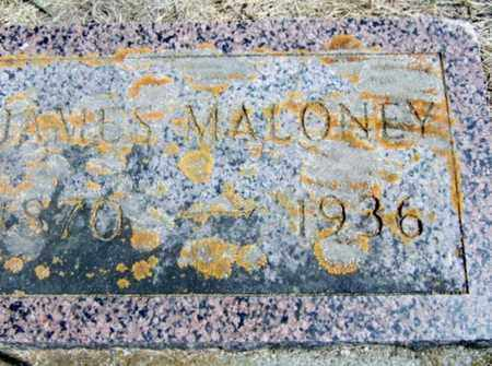 MALONEY, JAMES - Rolette County, North Dakota | JAMES MALONEY - North Dakota Gravestone Photos