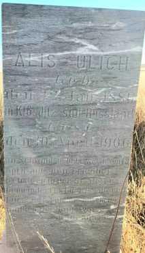UHLICH, ALIS - Sheridan County, North Dakota | ALIS UHLICH - North Dakota Gravestone Photos