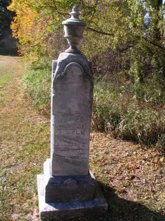 BELL, JANE - Traill County, North Dakota   JANE BELL - North Dakota Gravestone Photos