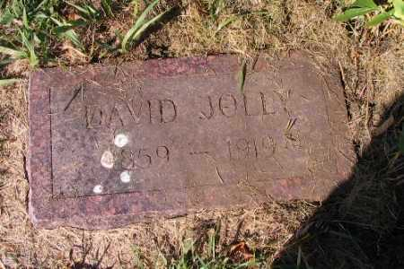 JOLLY, DAVID - Traill County, North Dakota | DAVID JOLLY - North Dakota Gravestone Photos