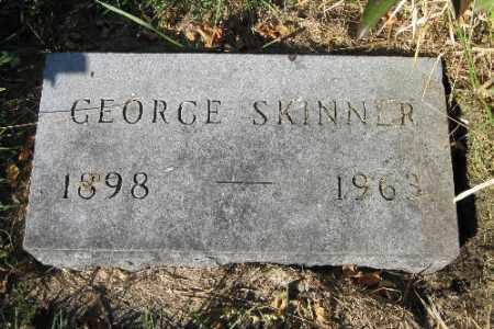 SKINNER, GEORGE - Traill County, North Dakota | GEORGE SKINNER - North Dakota Gravestone Photos
