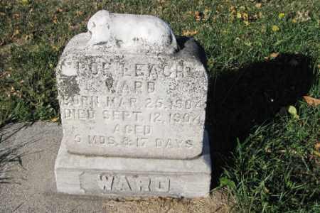 WARD, BABY - Traill County, North Dakota | BABY WARD - North Dakota Gravestone Photos