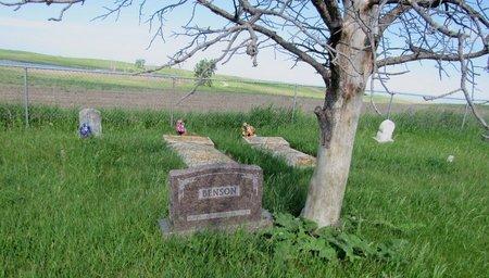 BENSON, FAMILY MARKER - Ward County, North Dakota | FAMILY MARKER BENSON - North Dakota Gravestone Photos