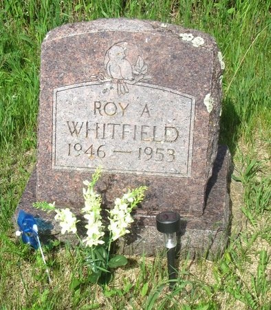 WHITFIELD, ROY A. - Ward County, North Dakota | ROY A. WHITFIELD - North Dakota Gravestone Photos