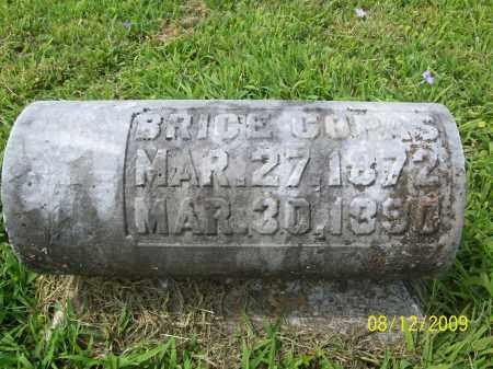 COPAS, BRICE - Adams County, Ohio | BRICE COPAS - Ohio Gravestone Photos