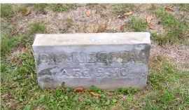 COPAS, DIANE - Adams County, Ohio | DIANE COPAS - Ohio Gravestone Photos