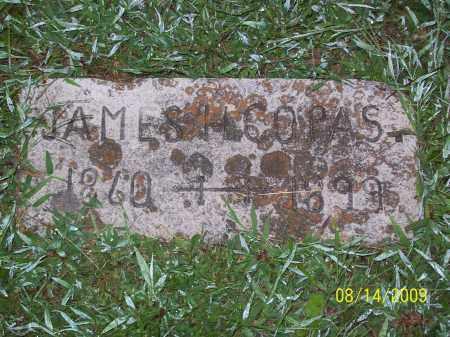 COPAS, JAMES HENRY - Adams County, Ohio | JAMES HENRY COPAS - Ohio Gravestone Photos