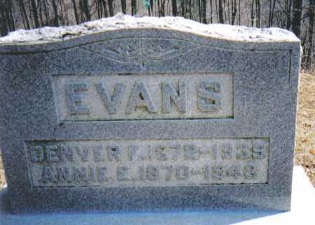 EVANS, DENVER F. - Adams County, Ohio | DENVER F. EVANS - Ohio Gravestone Photos