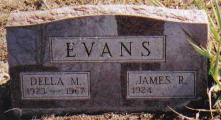 EVANS, JAMES R. - Adams County, Ohio   JAMES R. EVANS - Ohio Gravestone Photos